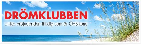 banner_springtime_dromklubben