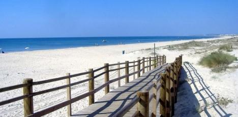 FAO Stranden 2