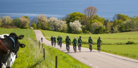 Båstad cykel grönbete