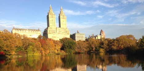 NYC Marathon Central Park höstbild