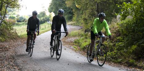 Båstad cykel kurva skog