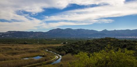 Training Camp Costa Blanca - risträsket